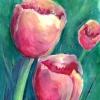 Tulip Variations 3 (2020)
