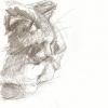 Pixie Sketch