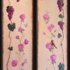 Meadow Lane: Grapes & Rose Garden