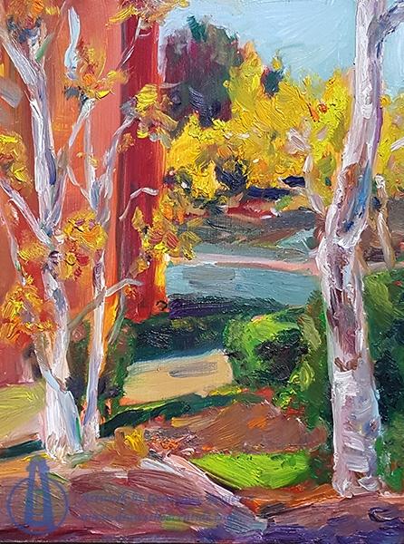 Birch Trees, School of Gov't Courtyard