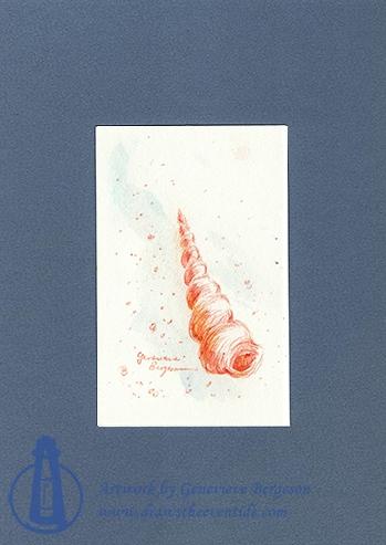 Spiral Shell (pen)