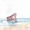 Wreck of the Peter Iredale (Light)