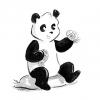 Taiyaki Panda